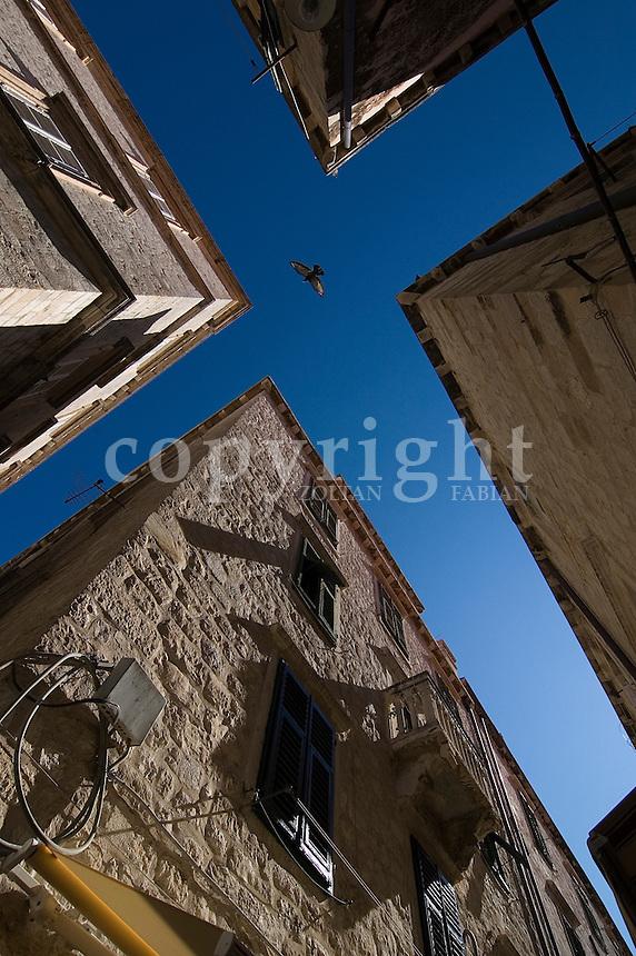 Bird flies on the sky between corners of old houses in Dubrovnik, Croatia, Europe