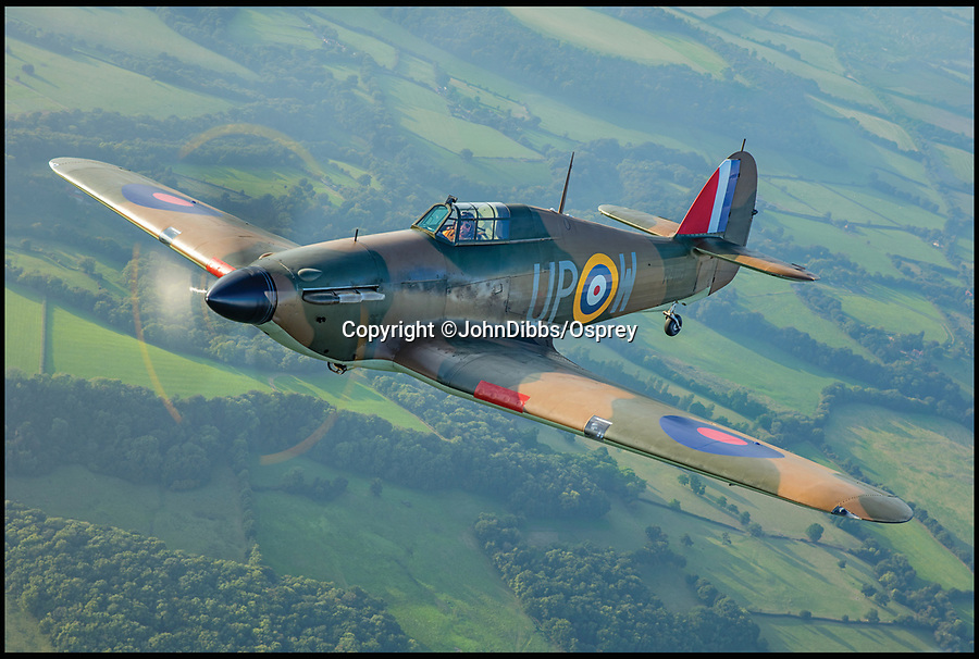 BNPS.co.uk (01202 558833)<br /> Pic: JohnDibbs/Osprey/BNPS<br /> <br /> Living history - R4118 - The last airworthy Hurricane to have actually flown during the Battle of Briain.<br /> <br /> Last of the Few - A photographer's stunning new book is a tribute to the last Hawker Hurricane's - the true workhorse of the Battle of Britain.<br /> <br /> Only 13 WW2 Hurricanes are still airworthy today, compared to over 60 of their more glamorous counterpart the Spitfire.<br /> <br /> But during the Battle of Britain there were in fact twice as many Hurricane's as Spitfires taking on Hitlers Luftwaffe in the skies over southern England.<br /> <br /> The Hurricane may be viewed as less glamorous than the Spitfire, but these stunning photographs reveal just how majestic it was in full flight.<br /> <br /> Photographer John Dibbs has got up close and personal to the legendary fighter planes in order to capture them like never before.<br /> <br /> His 10 year quest for surviving Hurricanes took him all over the world and he photographed them in England, France, the United States and New Zealand.<br /> <br /> Using the skill and experience of highly experienced RAF and civilian pilots, Mr Dibbs was able to fly to within 15ft of some of the last remaining Hurricanes - with breath-taking results.<br /> <br /> There was a fair degree of skill involved as he took the photos from the canopy of a Second World War trainer aircraft which was travelling at 200mph while confronting wind blast.<br /> <br /> The thrilling photos were taken for an a definitive history of the Hurricane which is told by Mr Dibbs and aviation historians Tony Holmes and Gordon Riley in their new book Hurricane, Hawker's Fighter Legend.