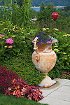 Vashon-Maury Island, WA<br /> Driscoll garden, with colorful flowers, planted decorative urns and garden art