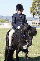 Shetland Turnout Rider 9-12