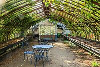 France, Loiret (45), La Bussière, château de la Bussière et jardins
