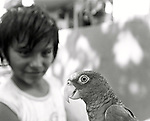 August, 2005. A young girl with her parrot. The surfing village of Troncones, in Guerro, Mexico.
