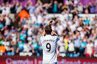 Fernando Llorente of Swansea City applauds fans during the Premier League match between Swansea City and West Bromwich Albion at The Liberty Stadium, Swansea, Wales, UK. Sunday 21 May 2017 (Photo by Athena Pictures/Getty Images)