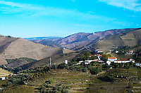 vineyards vale de mendiz douro portugal