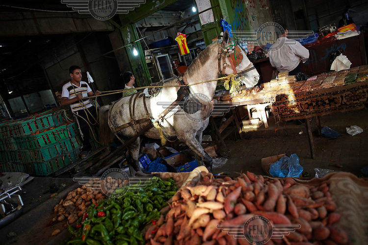 A horse and cart makes its way through Jabaliya market in Jabaliya, Gaza.