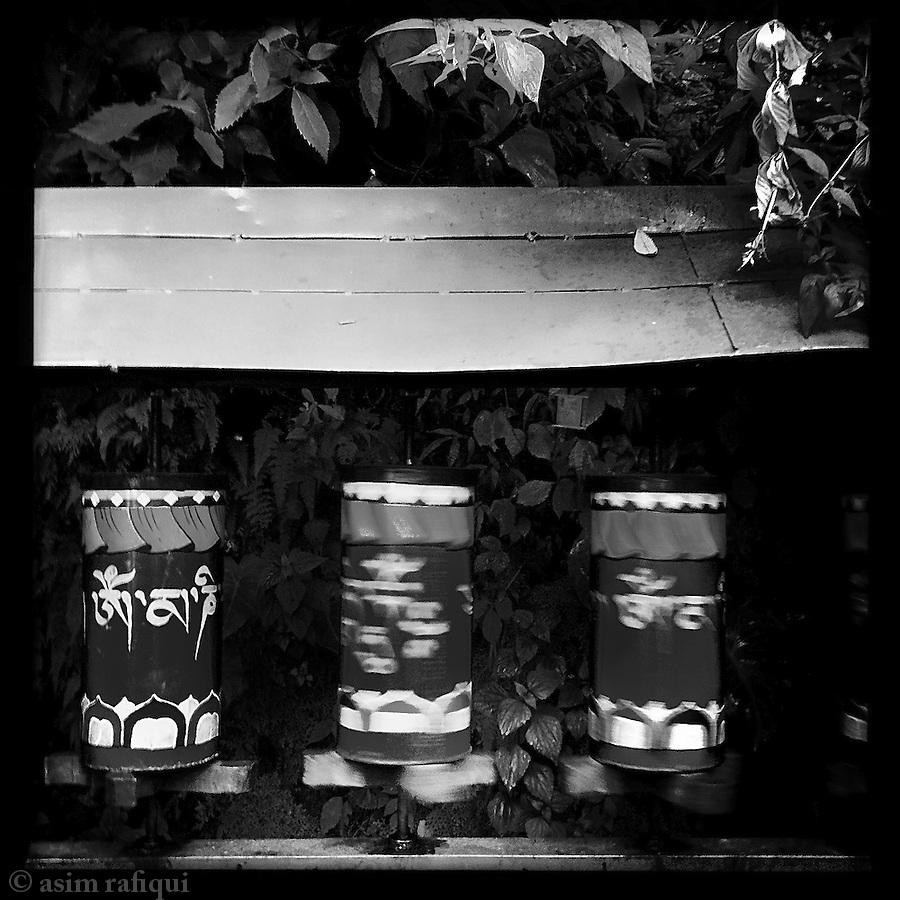 The Kora (walking circumambulation) - Dalai Lama's House, McCleod Ganj