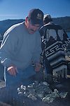 Man cooking oyster and clam shellfish on outdoor barbeque, Tomales Bay, Marin County, California