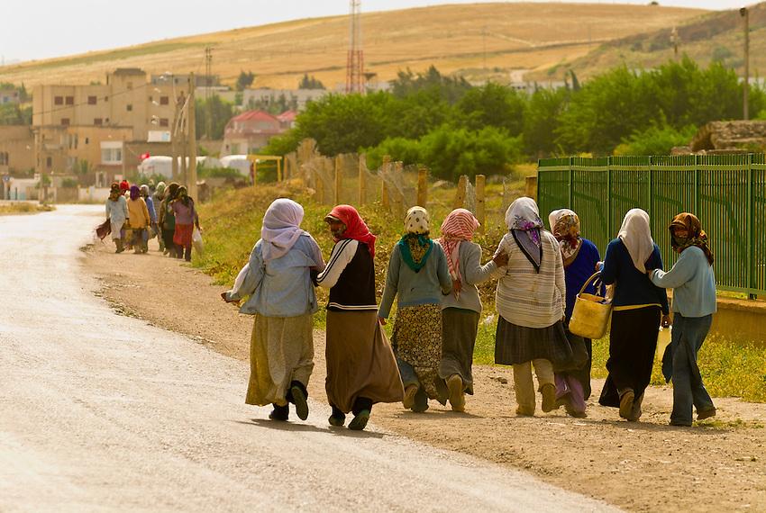 Women with head scarfs walking, Bulla Regia, Tunisia