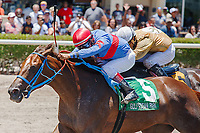 HALLANDALE BEACH, FL - JULY 01:  #5 Rose to Fame with Edgard Zayas up wins the Brave Raj Stakes at Gulfstream Park. Hallandale Beach, FL. (Photo by Arron Haggart/Eclipse Sportswire/Getty Images)