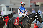 HOT SPRINGS, AR - FEBRUARY 19: Untrapped #1, with jockey Ricardo Santana Jr. aboard after the Razorback Handicap at Oaklawn Park on February 19, 2018 in Hot Springs, Arkansas. (Photo by Justin Manning/Eclipse Sportswire/Getty Images)
