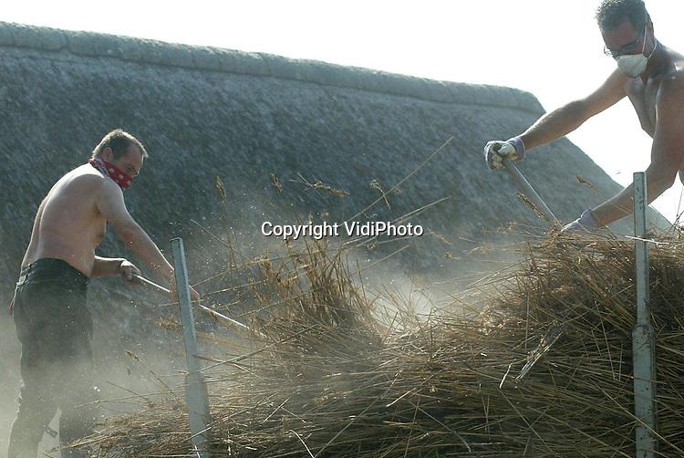 Foto: VidiPhoto..HETEREN - Personeel van Rietdekkersbedrijf Jansen uit Slijk-Ewijk trotseert de warmte en het stof van tientallen jaren. De mannen vernieuwen het versleten rieten dak van een oude T-boerderij langs de Rijndijk. De wachttijd voor het vernieuwen van een rieten dak bedraagt op dit moment zo'n anderhalf jaar. Volgens Jansen is er een enorm personeelstekort en neemt de vraag flink toe. Steeds meer particulieren ontdekken de voordelen (goede isolatie) van riet boven pannen.