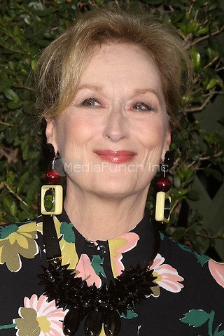 Meryl Streep at the Suffragette premiere at the Samuel Goldwyn Theater in Beverly Hills, California on October 20, 2015. Credit: David Edwards/MediaPunch
