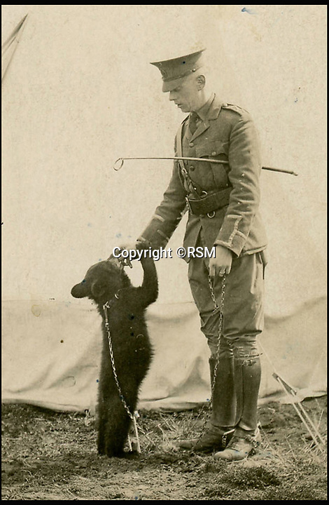 BNPS.co.uk (01202 558833)<br /> Pic: RSM/BNPS<br /> <br /> Lt Harry Colebourn With &ldquo;Winnie&rdquo;.<br /> <br /> A book of writings co-authored by AA Milne colourfully reflecting on his time spent as a First World War propagandist is being displayed for the first time ever. <br /> <br /> 'The Green Book' was written by the Winnie the Pooh author and fellow members of MI7b - a little-known intelligence branch of the War Office that produced propaganda. <br /> <br /> When the war ended officials attempted to destroy all traces of the secret department but four years ago 150 documents were unearthed inside the attic of one of its members. <br /> <br /> Now the ultra-rare copy, which is one of only two that exist, has been placed on display at the Royal Signals Museum in Blandford, Dorset.