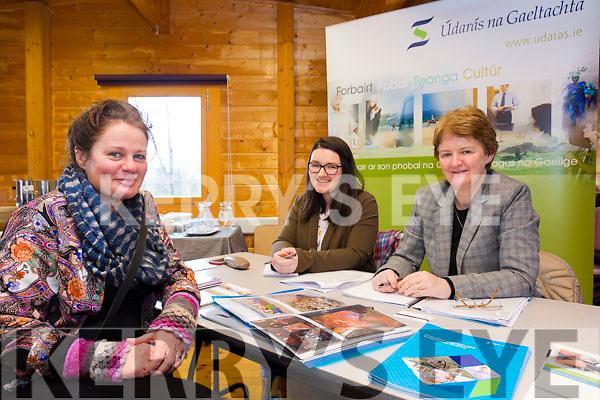 Pictured at the Enterprise Day in the Comhchoiste Offices on Monday were l-r; local Artist Róisín Ní Chionnfhaolaidh, Crisrín de Mórdha(Údaras na Gaeltachta) agus Máive Ní Shé(Údaras na Gaeltachta).
