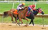 Lewis Meadow winning at Delaware Park on 6/30/16
