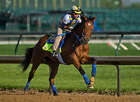 Vyjack, trained by Rudy Rodriguez, during morning workouts for the Kentucky Derby at Churchill Downs in Louisville, Kentucky on April 30, 2013.