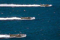 - amphibious armored vehicles LVTP of S.Marco battalion approach the beach of Cape Teulada military polygon (Sardinia)....- veicoli blindati anfibi LVTP del battaglione S.Marco si avvicinano alla spiaggia del poligono militare di Capo Teulada (Sardegna)