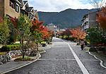 Residential houses in a modern suburban neighbourhood in fall at Daigonishiojicho, Fushimi-ku, Kyoto, Japan 2017