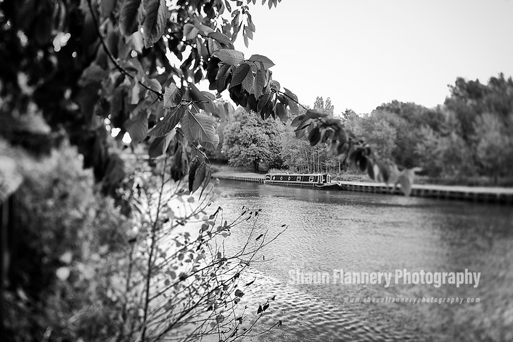 Pix: Shaun Flannery/shaunflanneryphotography.com...COPYRIGHT PICTURE>>SHAUN FLANNERY>01302-570814>>07778315553>>..