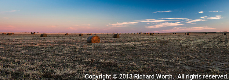 Stretching to the horizon, rolled bales of hay dot the  harvested fields at sunset in northeastern Colorado