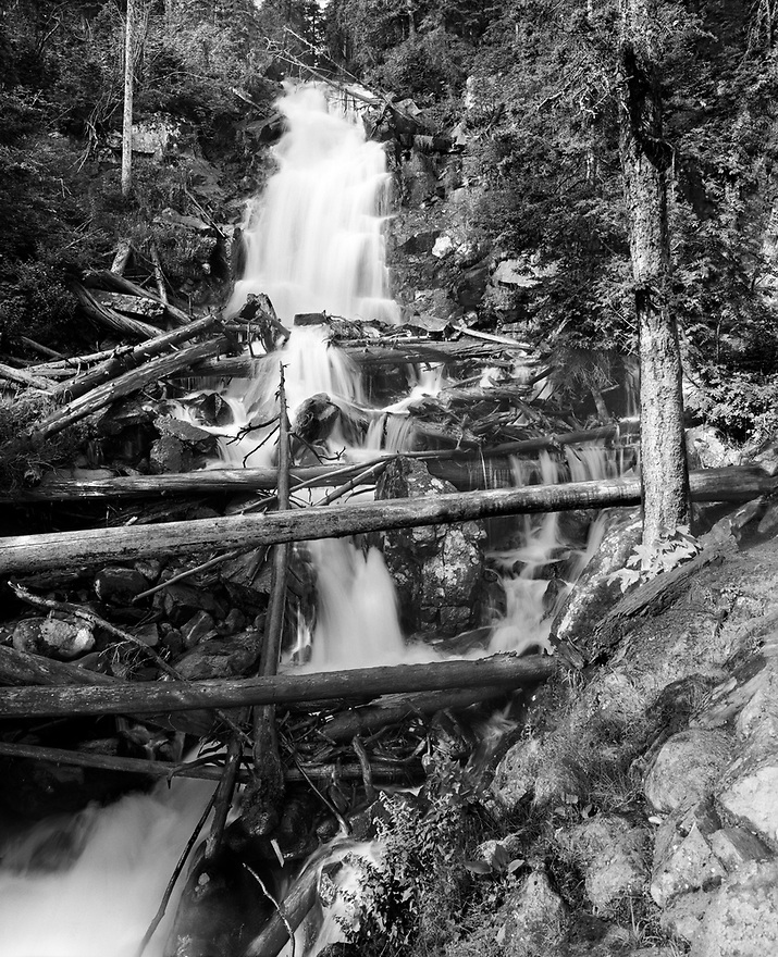 Fern Falls is found about 2 ½ miles from the Fern Lake trailhead.  Fern Creek, descending from Fern Lake another mile up the trail, creates this 60-foot falls.  Water tumbling over many rocks and logs produces a welcoming mist while you take a break and cool off.  The crisscrossing lines of the logs lead your eyes on an interesting exploration of the scene.
