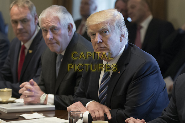 US President Donald J. Trump (R) holds a meeting with members of his Cabinet in the Cabinet Room of the White House in Washington, DC, USA, 13 March 2017. Also in the picture is Secretary of the Interior Ryan Zinke (L) and Secretary of State Rex Tillerson (2-L).<br /> CAP/MPI/RS<br /> &copy;RS/MPI/Capital Pictures