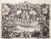 Europe/Hongrie/Tokay/Env Sarospatak: Couverture d'un ouvrage sur la région de Tokaj