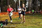 2017-03-25 Bolt 20 SB rem