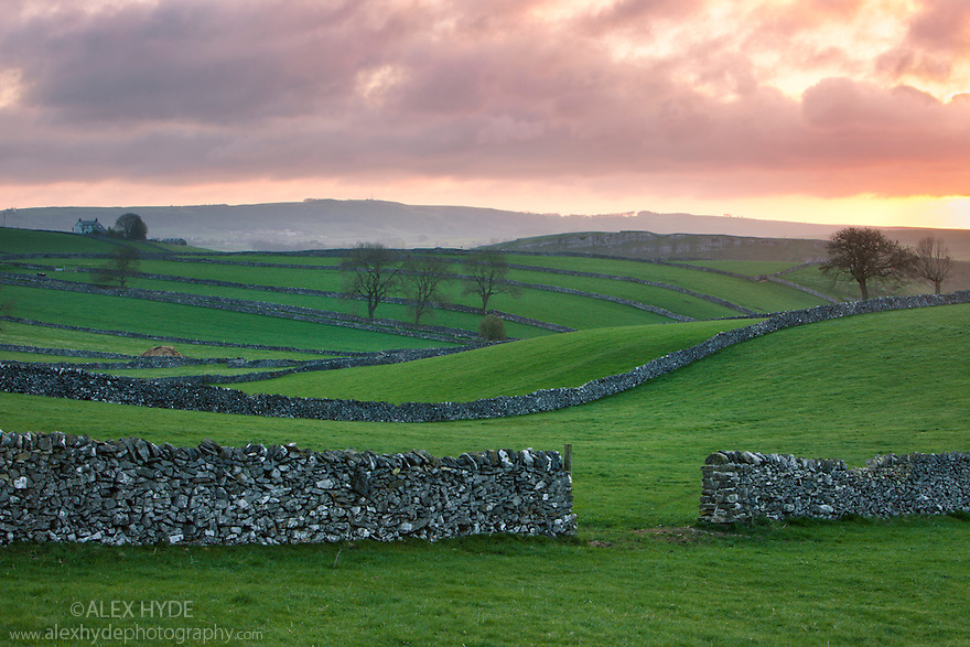 Fields and drystone walls near the village of Litton at sunrise. Peak Dstrict National Park, Derbyshire, UK. April.