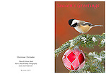 """XmasChickadeeCard<br /> Standard format notecard, 7"""" X 5"""" (folded) glossy card stock, blank inside, includes matching envelope and clear presentation bag."""