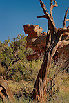 Balanced Rock in Reds Canyon, San Rafael Swell, Utah