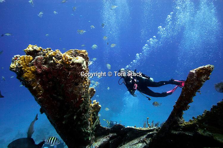 Wreck of the Benwood, Key Largo, Florida Keys
