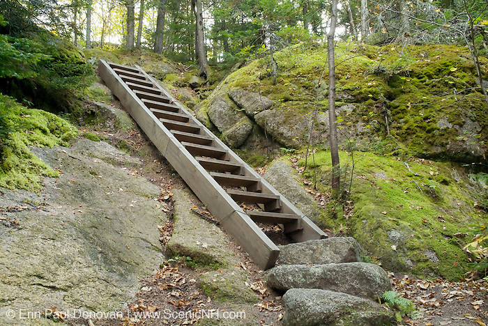 A trail ladder on Sugarloaf Trail just before the summit of Middle Sugarloaf Mountain during the summer months in the White Mountains, New Hampshire USA.