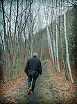 4.1.12 - Trail Walker....