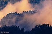 Winter fog in valley at sunset from Morton Overlook,  Great Smoky Mountains National Park, TN