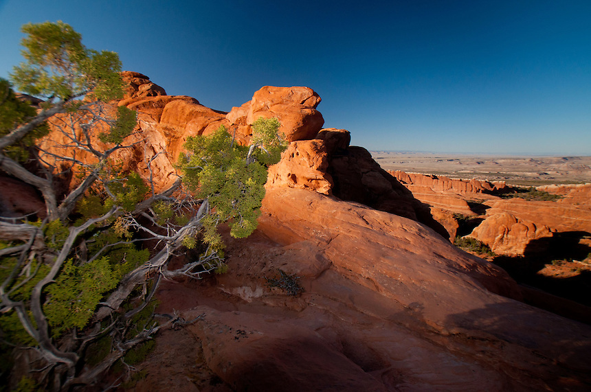Devils Garden, Arches National Park, Utah, US