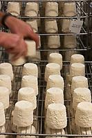 Europe/France/Poitou-Charentes/79/Deux-Sèvres/Villemain: Fromagerie à la ferme de Paul Gorgelet: Le Petit Boisselage -Affinage des Chabichous du Poitou