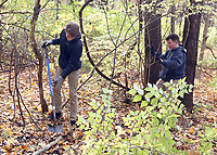 Students worked at removing invasive species of plants at Cool Creek Park in Westfield.  (L-R) Freshman Evan Miller and Sam Nolan