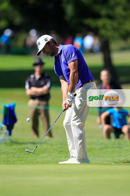 Wade Ormsby (AUS) chips onto the 15th green during Saturday's Round 3 of the 2014 Omega European Masters held at the Golf Club Crans-sur-Sierre, Crans Montana, Switzerland.: Picture Eoin Clarke, www.golffile.ie: 6th September 2014