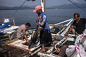 Fishermen offload the sustainably caught tuna to a smaller boat to sell to a buying unit in Puerto Princesa, Palawan in the Philippines. <br /> Photo: Sanjit Das/Panos for Greenpeace