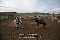 bucker Cowboys working and playing. Cowboy Cowboy Photo Cowboy, Cowboy and Cowgirl photographs of western ranches working with horses and cattle by western cowboy photographer Jess Lee. Photographing ranches big and small in Wyoming,Montana,Idaho,Oregon,Colorado,Nevada,Arizona,Utah,New Mexico.