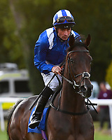 Hadeeqa ridden by Dane O'Neil goes down to the start during Ladies Evening Racing at Salisbury Racecourse on 15th July 2017