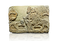 Picture &amp; image of Hittite relief sculpted orthostat stone panel of Herald's Wall Limestone, Karkamıs, (Kargamıs), Carchemish (Karkemish), 900-700 B.C. Anatolian Civilisations Museum, Ankara, Turkey.<br /> <br /> A pair of kneeling bull on either side of the tree of life, one each foot is on the tree, the other feet are bend towards the abdomen.  <br /> <br /> Against a white background.