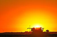 Combine at sunrise<br /> Moose Jaw<br /> Saskatchewan<br /> Canada