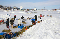 Melanie Gould leaves windbreaks of Unalakleet chkpt 2006 Iditarod Western Alaska Winter