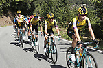 Team Jumbo-Visma control the peloton during Stage 15 of La Vuelta 2019  running 154.4km from Tineo to Santuario del Acebo, Spain. 8th September 2019.<br /> Picture: Luis Angel Gomez/Photogomezsport | Cyclefile<br /> <br /> All photos usage must carry mandatory copyright credit (© Cyclefile | Luis Angel Gomez/Photogomezsport)