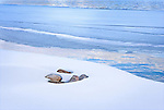 Abstract Design of Rocks in Snow Along Frozen Shore of Priest Lake Idaho