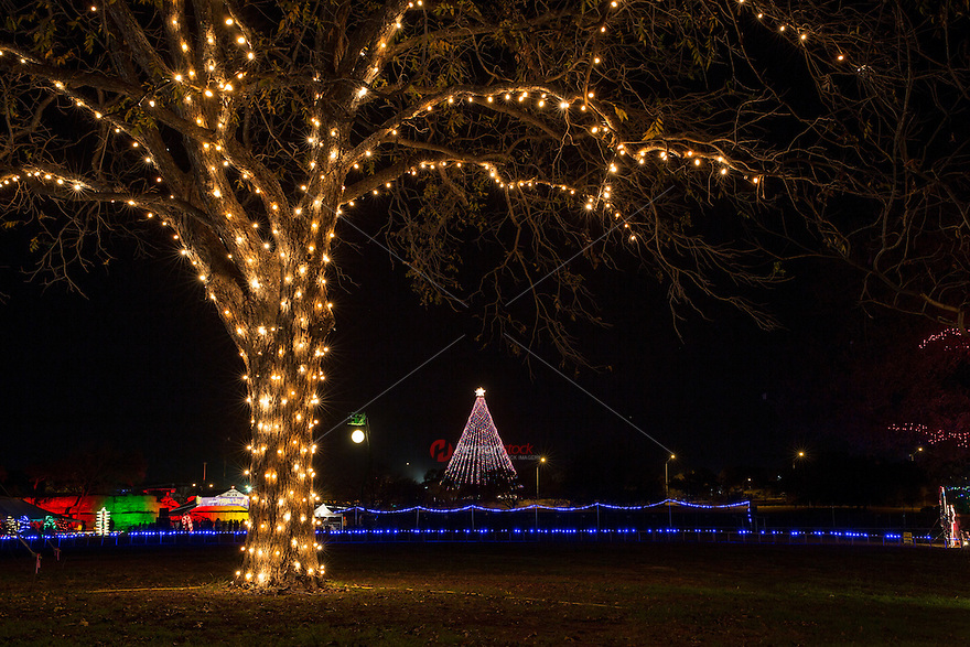 Zilker Holiday Tree as seen surronded by the Zilker Park Trail of Lights