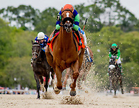 OLDSMAR, FL - MARCH 10: War Story #7, ridden by Irad Ortiz, Jr., wins the Challenger Stakes on Tampa Derby Day at Tampa Bay Downs on March 10, 2018 in Oldsmar, FL. (Photo by Scott Serio/Eclipse Sportswire/Getty Images)