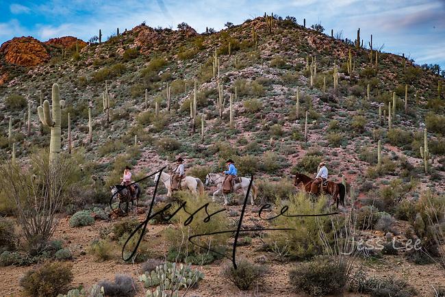 Arizona Cowboys